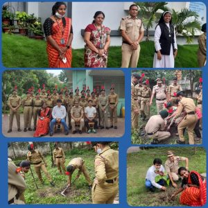 NCC Committee Conducted an activity on the occasion of Plantation day at University guest house